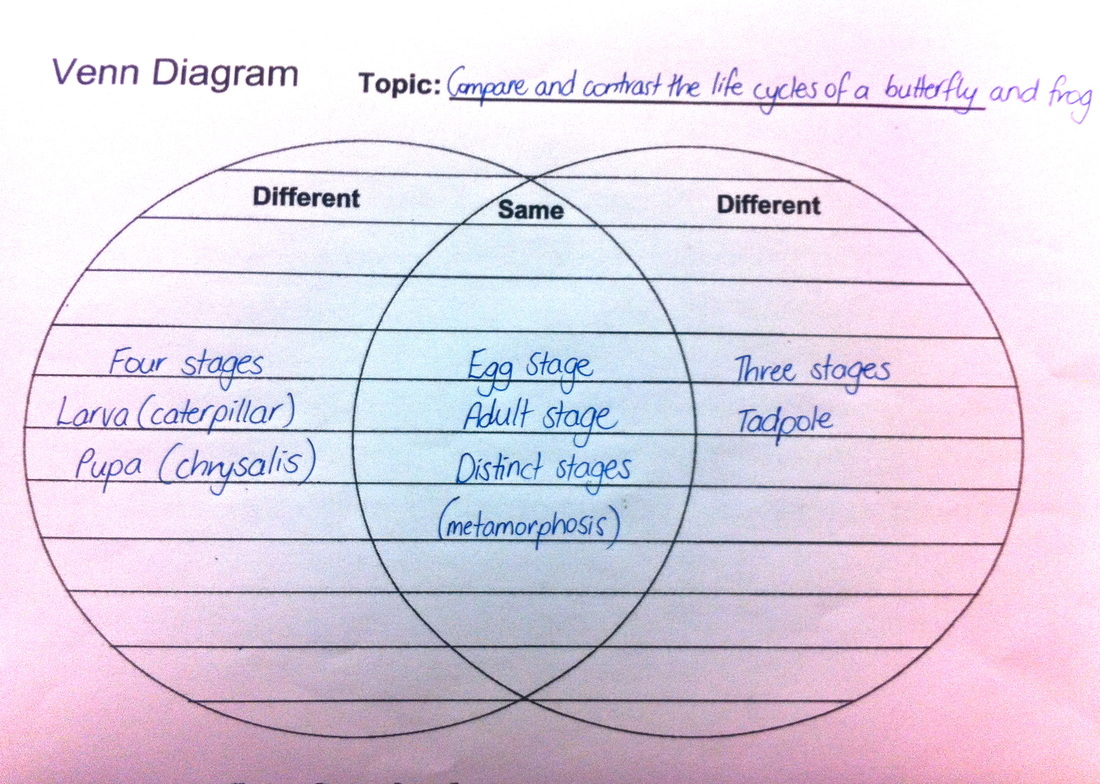 Analyzing live cycles draw a venn diagram to compare and contrast the life cycles of a butterfly and a frog pooptronica
